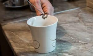 Vremi Milk Frother Review